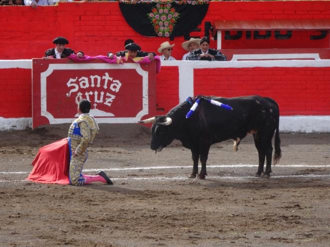 corrida de toros en Santa Cruz, Cajamarca, Peru