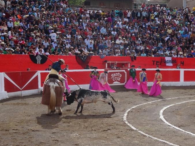 picador en corrida de toros