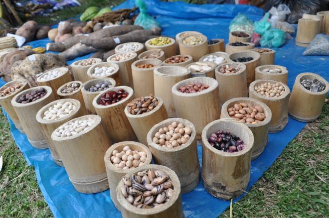 fresh seeds in andes peru