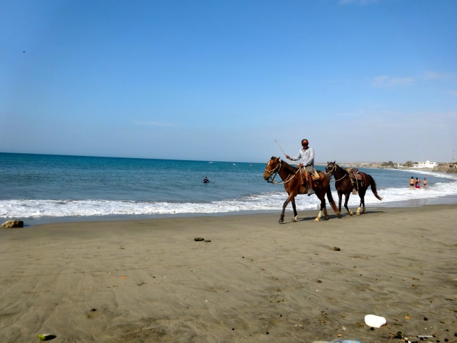 Horses on the beach vacation Mancora, Peru