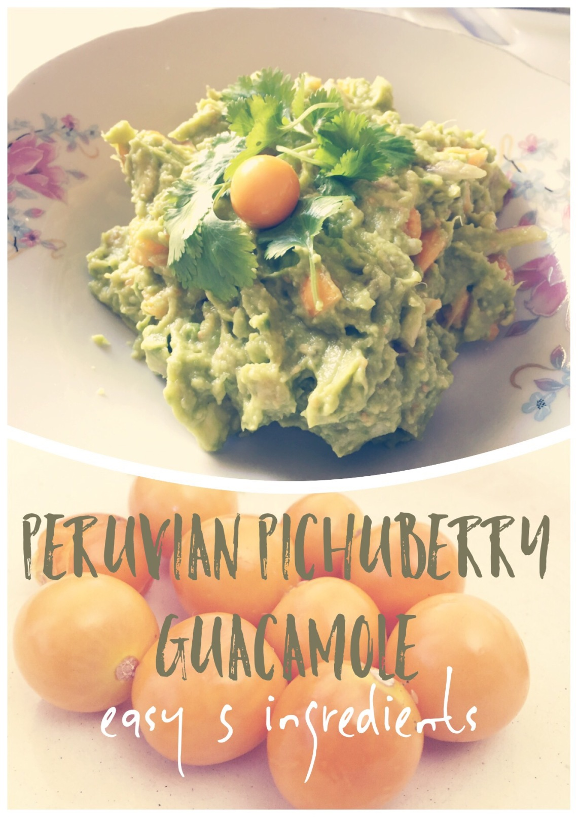 Peruvian Pichuberry Guacamole easy recipe